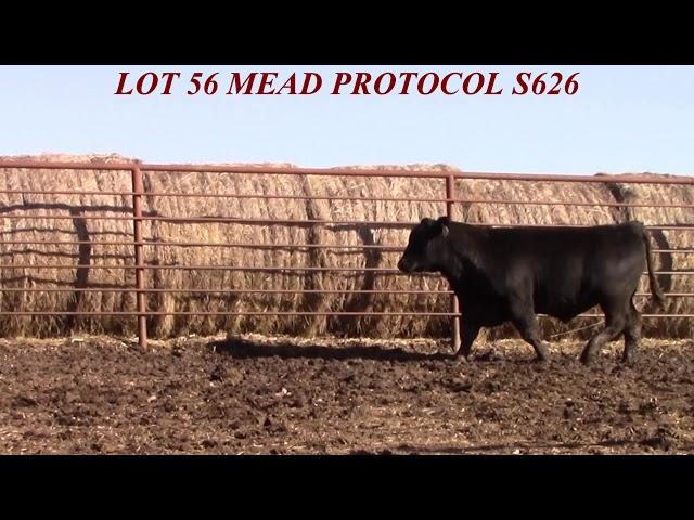 Mead Farms Lot 56