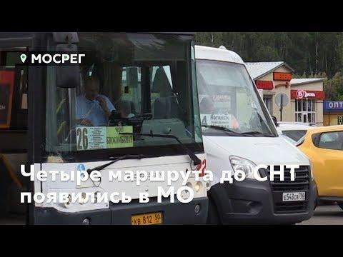 Как новые автобусы осчастливили подмосковных дачников