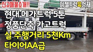 현대메가트럭 5톤카고트럭(정품단축)적재함길이4.7미터 …