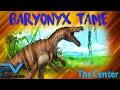 ARK | THE CENTER | TAMING A BARYONYX! | SOLO