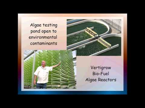 Algae Bio-Fuel presentation