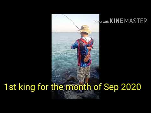 1st KING FISH OF THE MONTH
