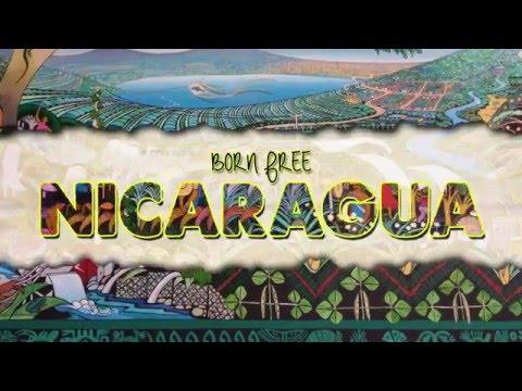 Born Free: NICARAGUA (CASH ONLY Remix)