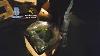 Intervenidas en Málaga más de seis toneladas de cocaína en un cargamento de bananas