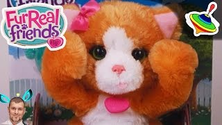 Забавные зверята котенок \ furreal friends lil' big paws