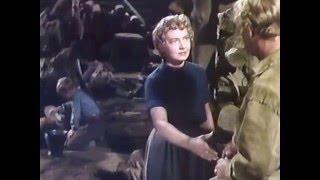 シェーン (1953) 遥かなる山の呼び声  Shane