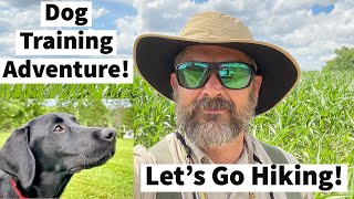 Labrador Retriever Training   Uncle Stonnie Takes The Pups On A Fun Dog Training Adventure!