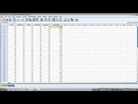 How to Use SPSS-Data Aggregation