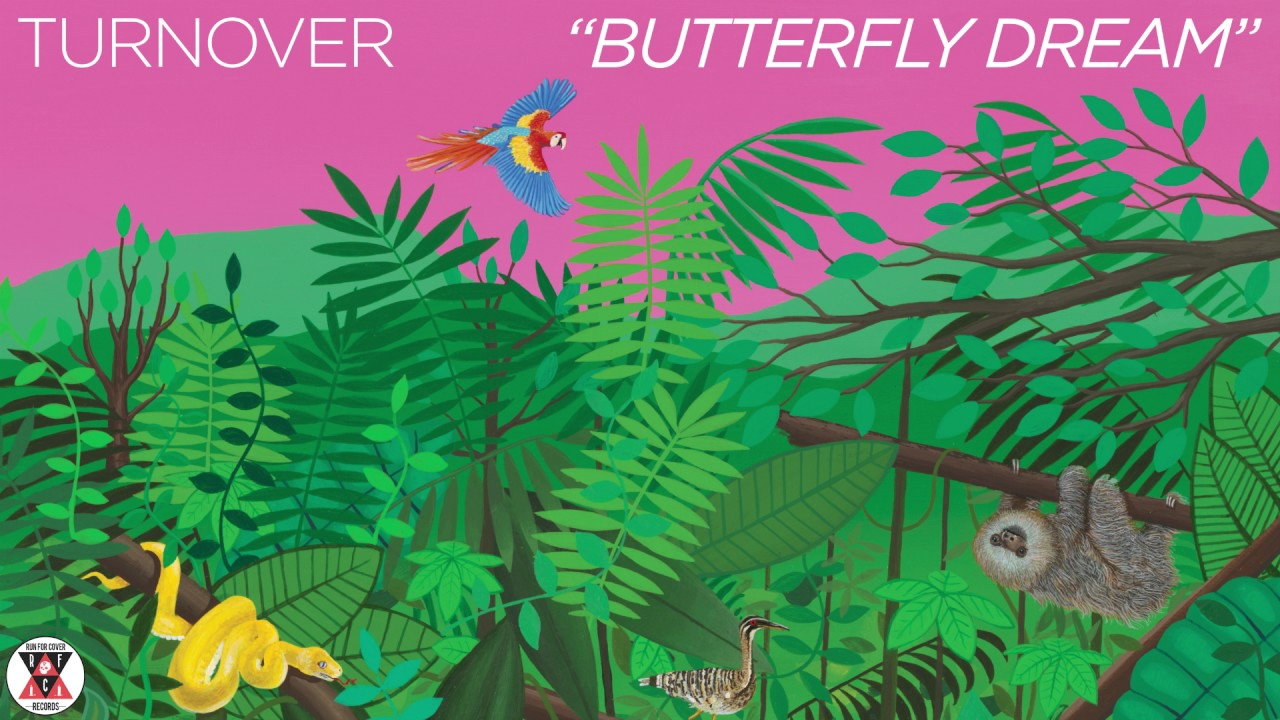 turnover-butterfly-dream-official-audio-run-for-cover-records