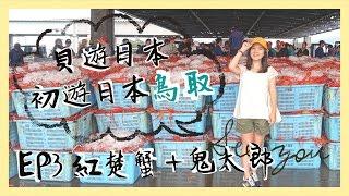 【貝遊日本】初遊日本鳥取2016|EP3 境港、紅楚蟹拍賣、水木茂紀念館、水木茂之路
