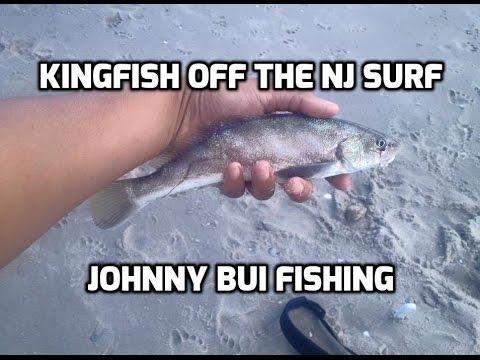 Surf Fishing For Kingfish (Kingcroaker, Whiting), NJ, 6/22/16