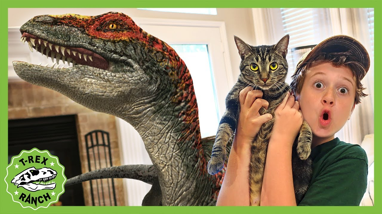 Baby Raptor Dinosaur in the House! T-Rex Ranch - Jurassic Videos for Kids