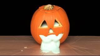 Oozing Pumpkin - Sick Science! #060