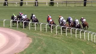 Vidéo de la course PMU PRIX DE CLAIREFONTAINE