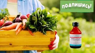 А ВЫ ЗНАЛИ? Несколько способов применения нашатырного спирта в саду и огороде