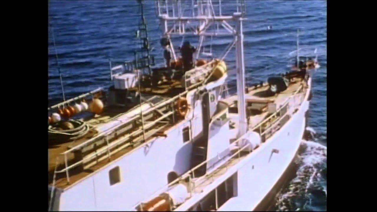 jacques cousteaus calypso