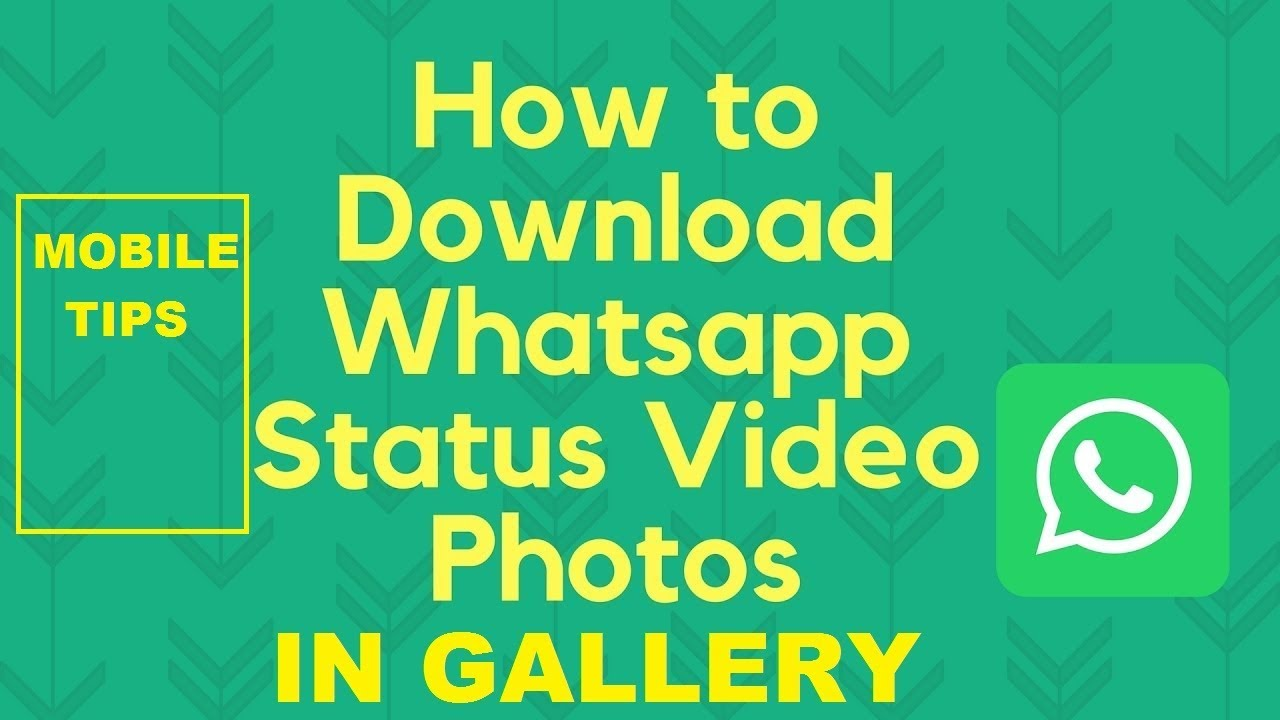 How To Save Whatsapp Status In Gallery Mobile Tips