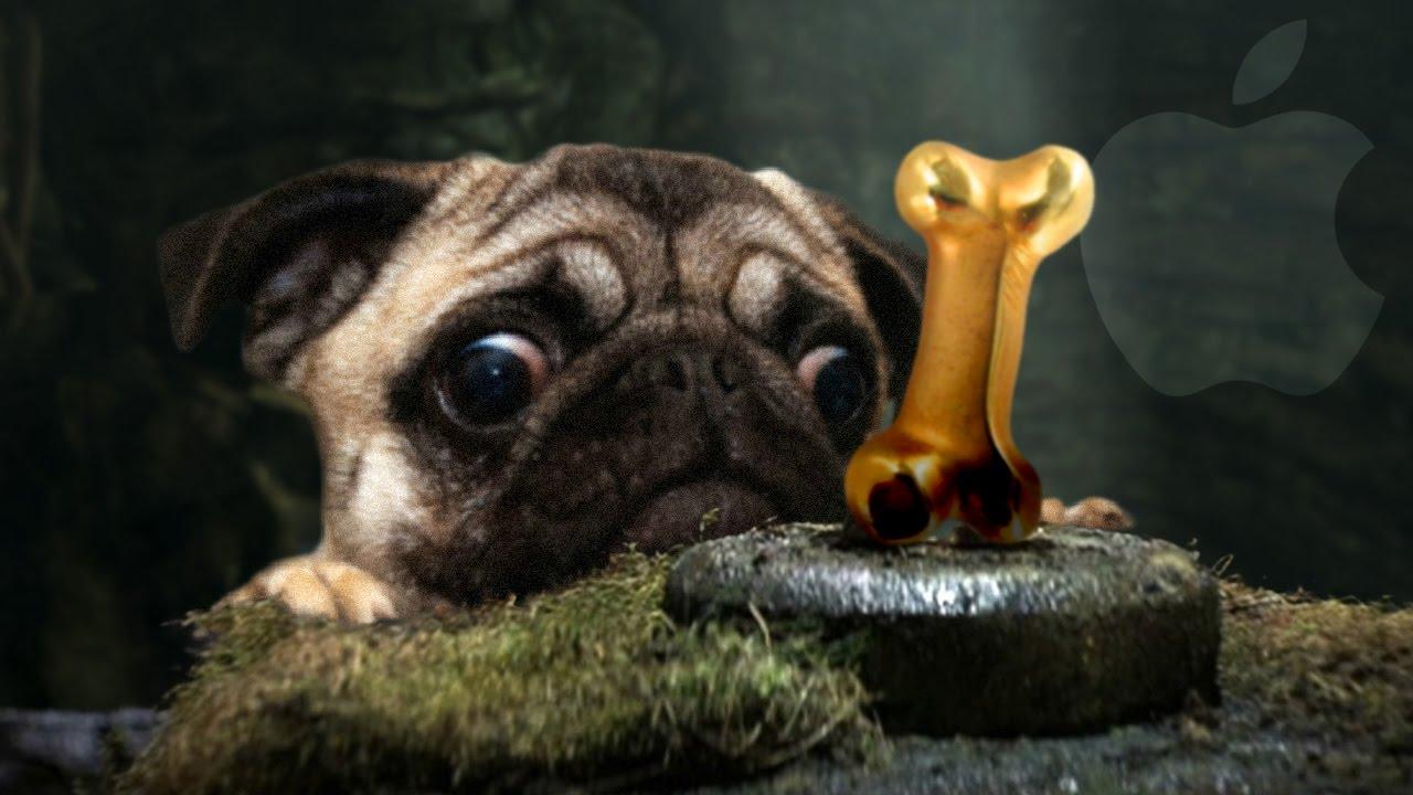 Indiana Jones En Pug Pug S Quest Ios Youtube