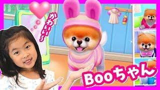 「世界一かわいい犬 Boo」とうたっているアプリゲームで遊んでみました...