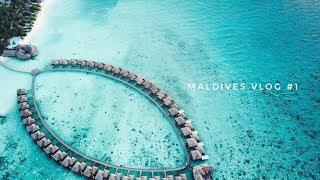 Maldives VLOG 1. Первый полет на гидроплане/Неожиданный сюрприз от отеля.