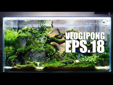 Cara Membuat Lampu Aquarium Sendiri Vlogipong Eps 18 Youtube