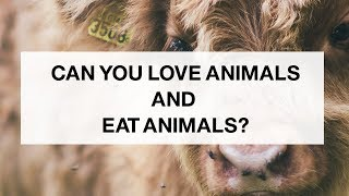 can-you-love-animals-and-eat-them-30-days-30-excuses