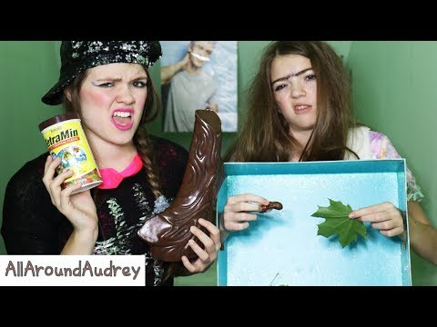 GERTIE AND THERMA: WHAT'S IN THE BOX CHALLENGE! / AllAroundAudrey