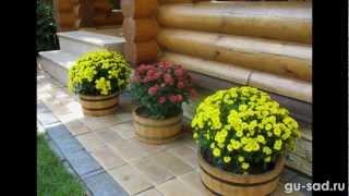 видео Зимний сад, флористика, клумбы, сад, ландшафтный дизайн
