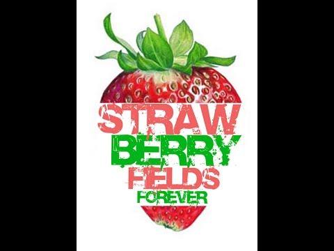 Бисквитный торт Strawberry fields (рецепт, пародия Глафиры Абрамовны)