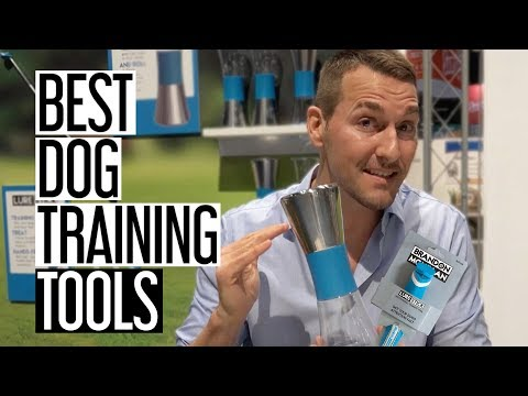 New Brandon McMillan Dog Training Products Review