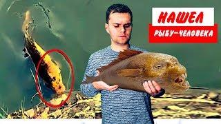 Обнаружили Рыбу с Человеческим Лицом//ПАРАЗОМБ у Костра #6
