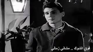 عبد الحليم حافظ - فوق الشوك مشاني زماني