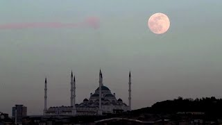 Supermoon lights up skylines across the world