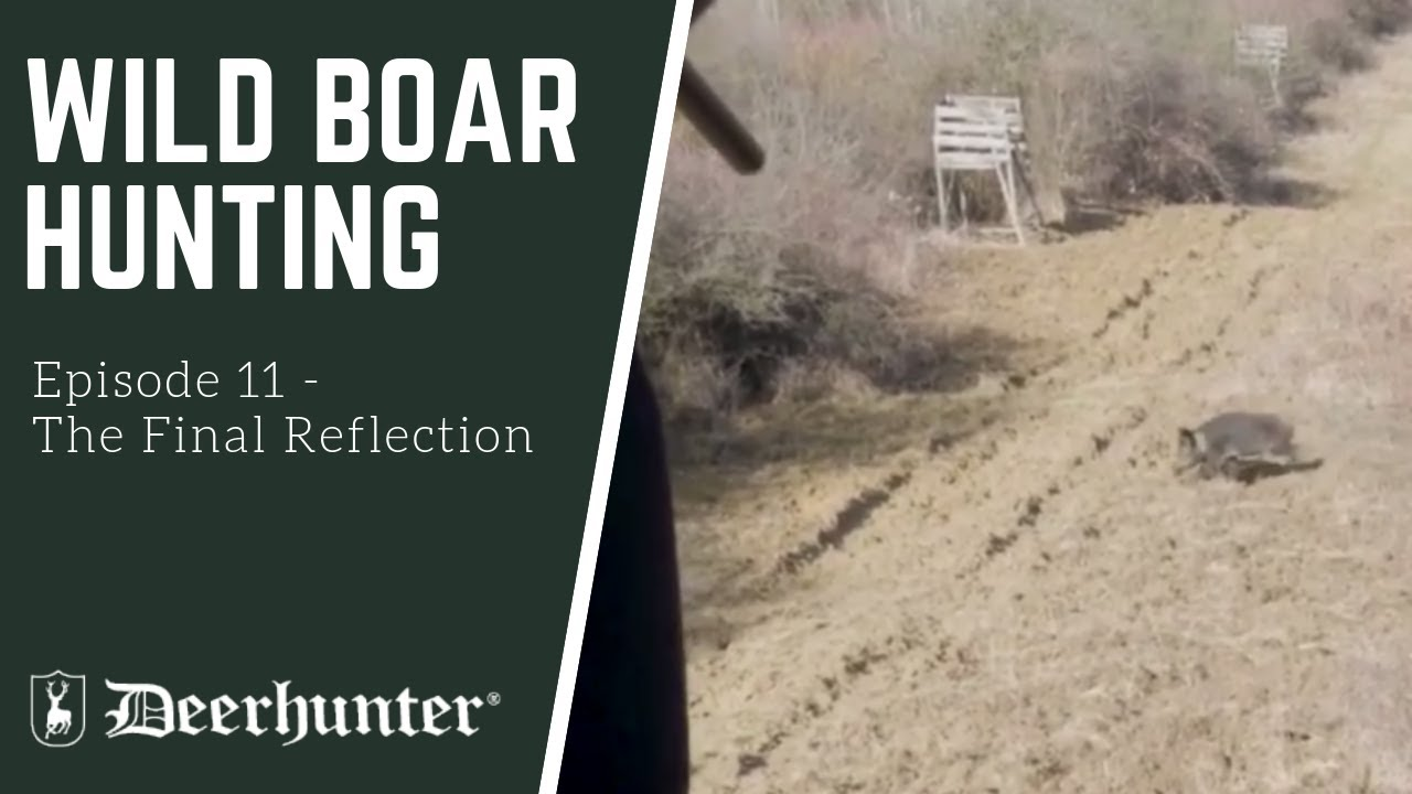 Episode 11 – Wild Boar Hunting: The Final Reflection