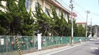2015年5月5日、新潟県民会館大ホールでの Negicco 初のワンマンツアーフ...