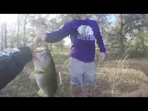 Accidentally Catching A Gator While Bass Fishing
