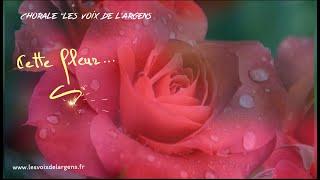 Chorale Les Voix de l'Argens - Cette fleur te pleure …