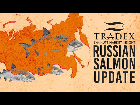3MMI - The 2019 Russia Pacific Salmon Fishery
