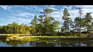 Природа Карелии(Природа Карелии фото - В. Рогов муз.композиция - ДиДюЛя - саксофон и гитара Хотите научиться делать поздрави..., 2013-06-12T19:25:21.000Z)