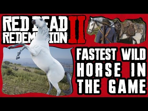 HOW & WHERE TO GET THE FASTEST WILD HORSE IN RED DEAD REDEMPTION 2
