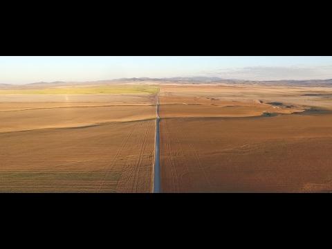 the-farm-|-wheat-montana-bonus