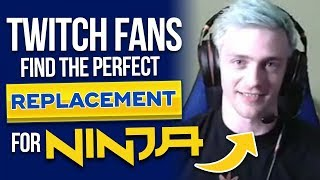 Twitch Fans Find The Perfect Replacement For Ninja