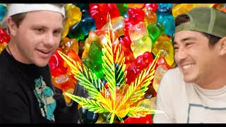 EDIBLE Gummies made at Home |  Curtis & Kirkus Cannabis Circus