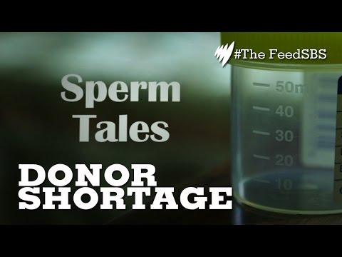 Sperm donor shortage I The Feed