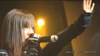 High and Mighty Color Live Sakura Con 2010.