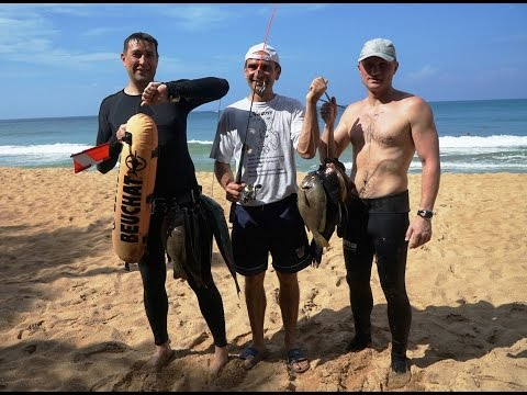 Spearfishing Sri Lanka 2015 HD