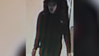 Security Images Show Manchester Bomber