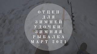 Отцеп для зимней рыбалки Как отцепить удочку Рыбалка на окуня март 2021 В гостях у Владимира