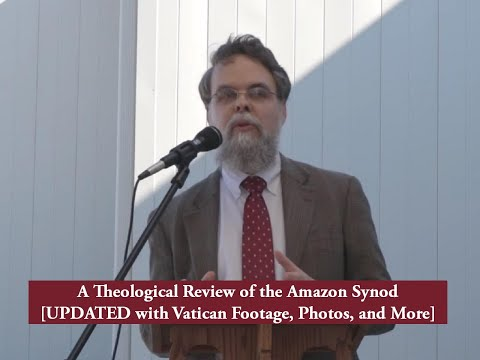A Theological Review of the Amazon Synod [UPDATED WITH VATICAN FOOTAGE]