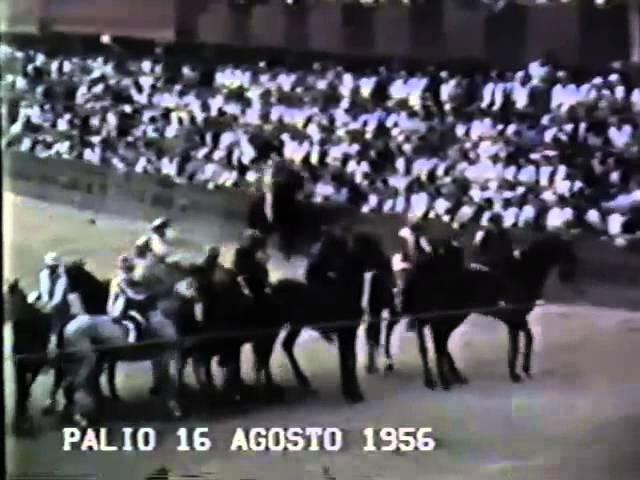 Palio 16 agosto 1956